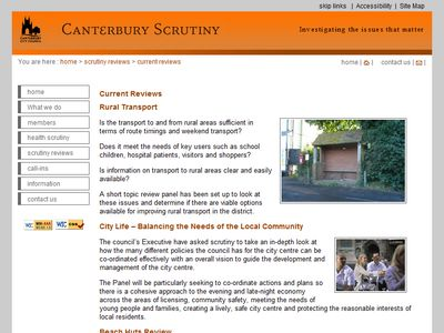 scrutiny website