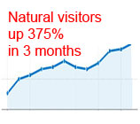 website visitors increase