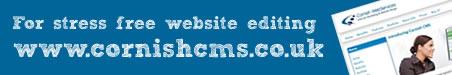 accessible website design