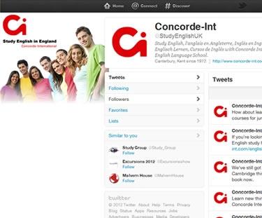 custom twitter page